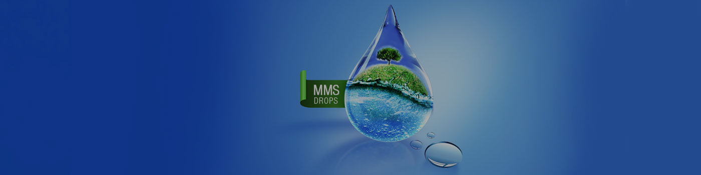 MMS Supplement - About Us